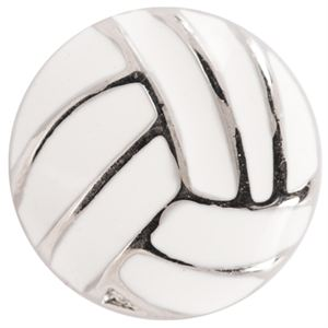 Picture of Volleyball Charm